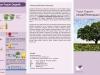 Leaflet Pupuk Organik
